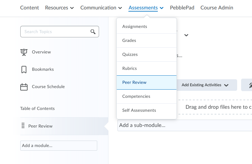 Selecting Peer Review from the Assessments menu