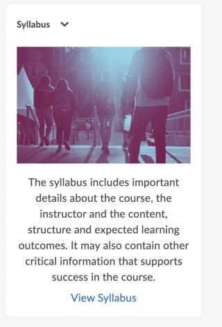 syllabus widget